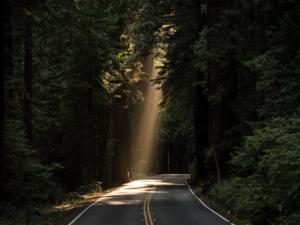 The Mental Health Benefits of Spirituality